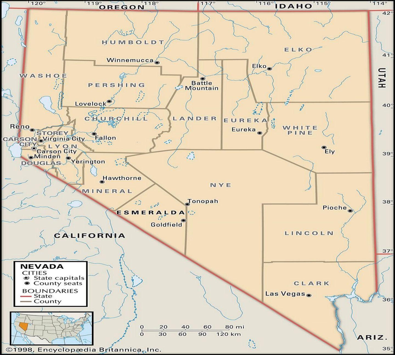 Tigerfloc Flocculant - Nevada