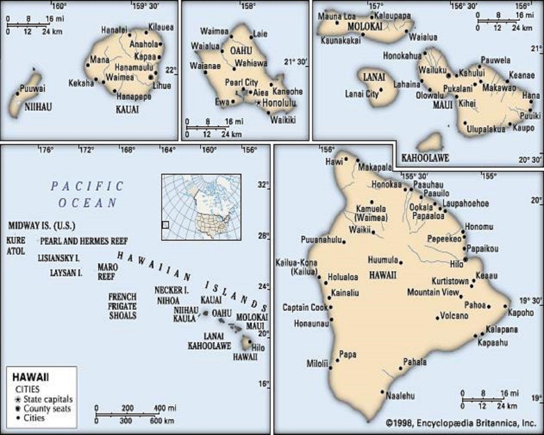 Tigerfloc Flocculant - Hawaii